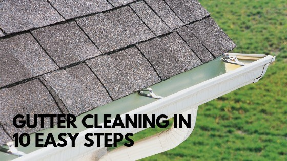 How to Clean Gutters Like a Pro