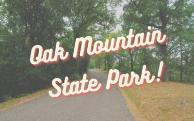 Top Reasons to Visit Oak Mountain State Park in Alabama this Fall