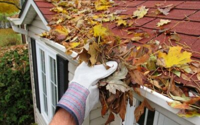The Myths and Facts about gutter cleaning